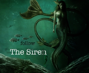 follow the siren 3
